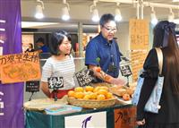 刀根早生柿、県外にも広まって 奈良の天理大生ら南海難波駅で販売