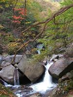 【日本再発見 たびを楽しむ】燃えるような紅葉と「ほうとう」堪能~竜門峡(山梨県甲州市)