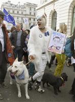 EU離脱、反対だワン ロンドンで飼い主と犬たちがデモ行進