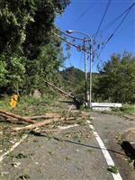 塩害で電線から火花300件 6日以降、静岡・中部電管内