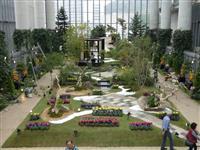 秋の草花「日本美」演出 茶室や枯山水の庭園再現 淡路市の「奇跡の星の植物館」