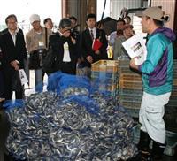 北米原産「ホンビノス貝」が千葉ブランド水産物に 濃厚な味、漁獲量で期待大