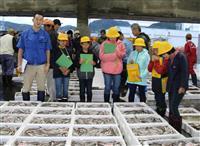 「魚(とと)の学校」児童興味津々 香住漁港のセリなど見学