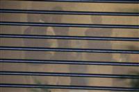 記者不明事件でサウジの皇太子に注目集まる 殺害指示との疑惑も