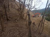 和歌山・日高町が県史跡を無断造成、位置正確に把握せず