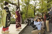北野天満宮で芸舞妓の撮影会 京都
