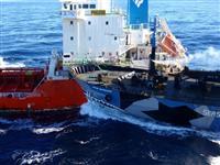 シー・シェパードが捕鯨国への圧力を強化 日本には幹部クラスが入国