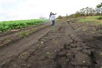 被災地、北海道・安平町の農家を札幌で応援マルシェ 28日に開催