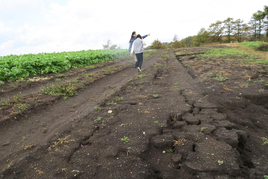 被災地、北海道・安平町の農家を...