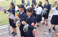敦賀港彩る「ミライエ」、来月3日から 地元高校生が電飾設置