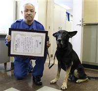 お手柄警察犬に感謝状、72歳登山客をスピード救助 兵庫・宍粟