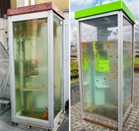 「金魚電話ボックス」訴訟初弁論 商店街側が争う姿勢示す