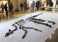 復興願い「むかわ竜」公開 国内最大骨格化石、北海道