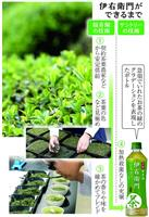 【関西の力】食・生かす(1)サントリー『伊右衛門』秘話 京の茶の老舗、200年の暖簾か…