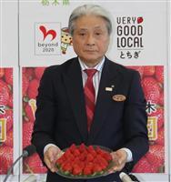 栃木県、イチゴ新品種を披露 関西圏普及に追い風 病気に強く輸送面で優位