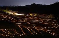 光の中の原風景 大阪・千早赤阪村で棚田ライトアップ