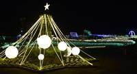 100万球が彩る…茨城県フラワーパークでイルミネーション