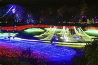 とっとり花回廊、「星取県」にちなみ電飾140万球で宇宙表現