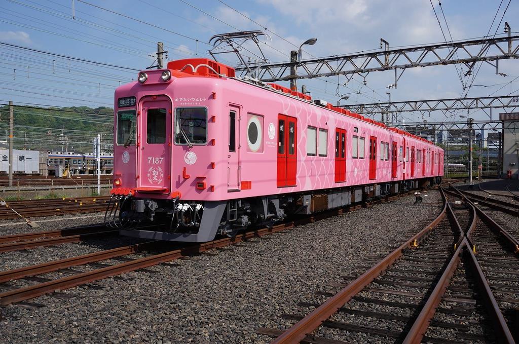 南海加太線 23日に観光列車同士...