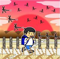 【理研が語る】田んぼのトンボと、手足の風景 北嶋慶一