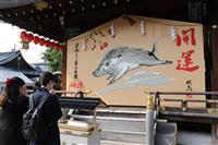 京都の護王神社にイノシシの大絵馬