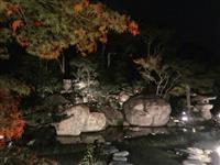 淡路島の旧益習館庭園、ライトアップ始まる