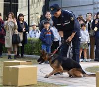 神戸税関の仕事知って 庁舎など公開 麻薬探知犬の実演に拍手