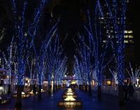 インスタ映えも楽しんで さいたま新都心でLED20万個点灯