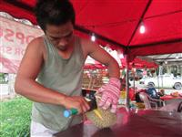 【ASEAN見聞録】中国のドリアン需要が脅かすマレートラ生息地