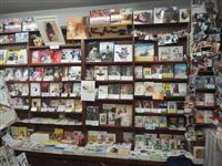 【日本再発見 たびを楽しむ】猫ファンの熱視線集める〝夢空間〟~神保町にゃんこ堂(東京都…