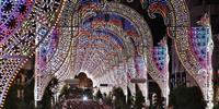 【動画】神戸ルミナリエ開幕 復興のまちを彩る