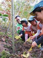「因幡千本桜」をもう一度 保育園児らが植樹 鳥取