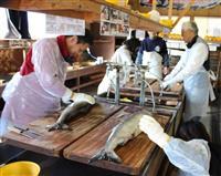 【甲信越ある記】新潟・村上 鮭塩引き道場 サケの里で伝統の味学ぶ