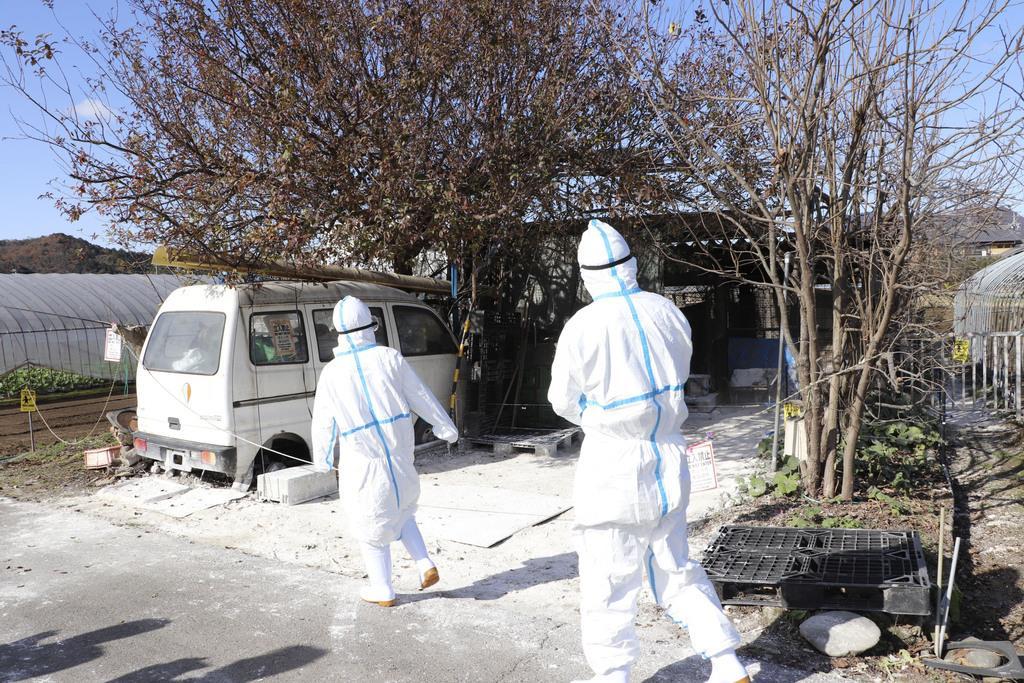 豚コレラに感染したイノシシが見つかった飼育施設=10日午後0時5分、岐阜県関市