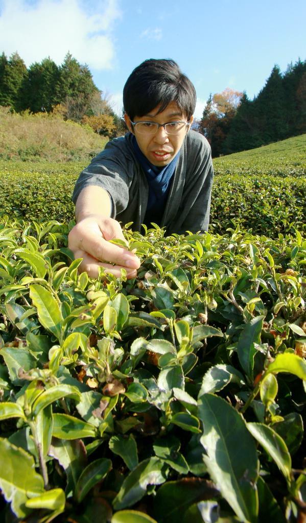 【お茶で日本を温かく(2)】高校時代から自然農法 健一自然農…