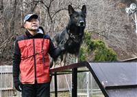「堂々とした機敏な動き」 警察犬訓練の全国競技会で甲州のアポロンV