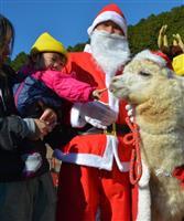 兵庫・神河の保育園にアルパカのサンタ登場 園児ら100人と交流