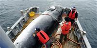 政府、IWC脱退を正式発表 来年7月、30年ぶり商業捕鯨再開へ