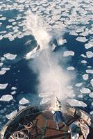 IWC脱退に関する内閣官房長官談話全文 反捕鯨国との「共存の可能性なし」で決断