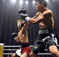 井上尚弥が「年間最高KO」 米リング誌が選出