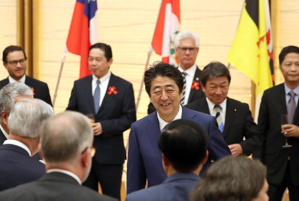 「TPP11 安倍総理」の画像検索結果