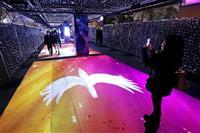 ペガサスが誘う光の回廊 東京メガイルミネーション