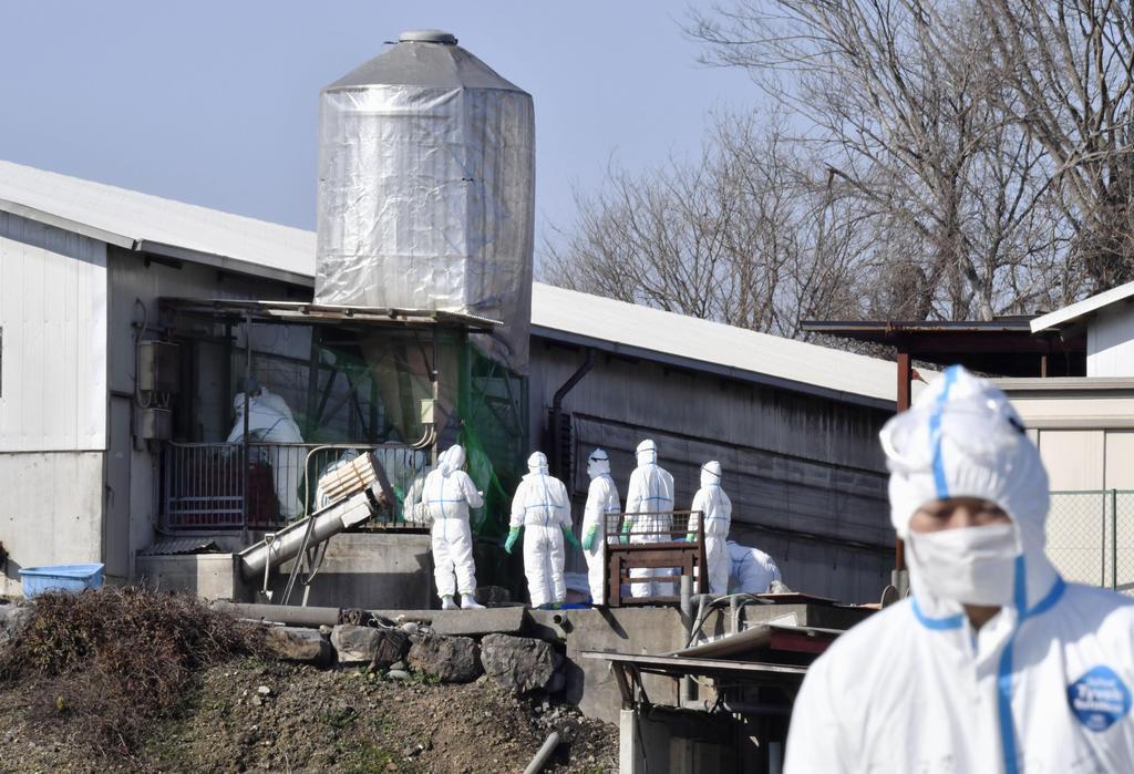 飼育する豚から豚コレラの陽性反応が出た養豚場の施設=29日午前10時21分、岐阜県各務原市