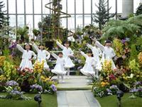 ラン展、華やか2万株 淡路島・奇跡の星の植物館、ユニーク生態紹介