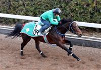 インディチャンプが人気 競馬の東京新聞杯オッズ