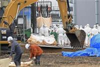 豚コレラ5府県に拡大 愛知・豊田の養豚場出荷 症状後搬出も、農水省調査