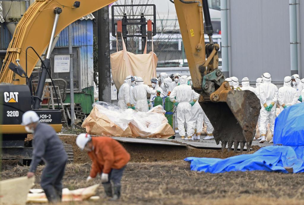 豚コレラの陽性反応が出た愛知県豊田市の養豚場で進む防疫作業=6日午後
