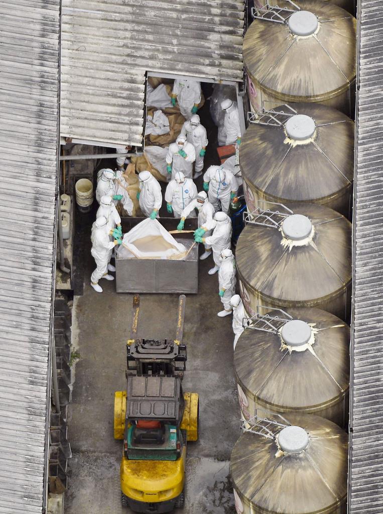 豚コレラの感染が確認された愛知県豊田市の養豚場では防護服を着た作業員が豚の殺処分を行った=6日午後1時14分(共同通信社ヘリから)