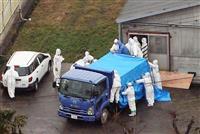 豚コレラ、感染拡大 大阪・滋賀でも殺処分に追われる