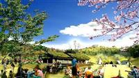 和歌山市、道の駅事業者に日本旅行など選定